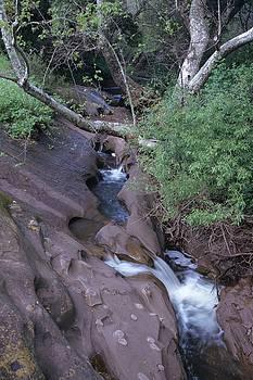 Don Kreuter - Spring Creek