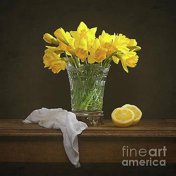 Spring Daffodil Flowers by Amanda Elwell