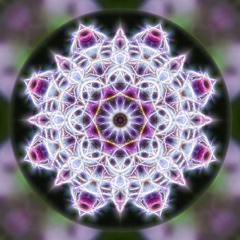 Spring Energy Mandala 1 by Beth Sawickie