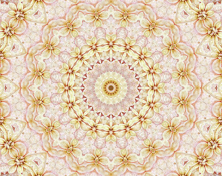 SPring Fantasy Floral Mandala by Janusian Gallery