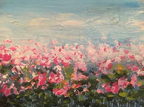 Spring Fields by Chitra Chakravarthy
