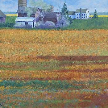Spring Fields by Philip Hewitt