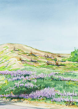Hillside Lupins by Ray Cole