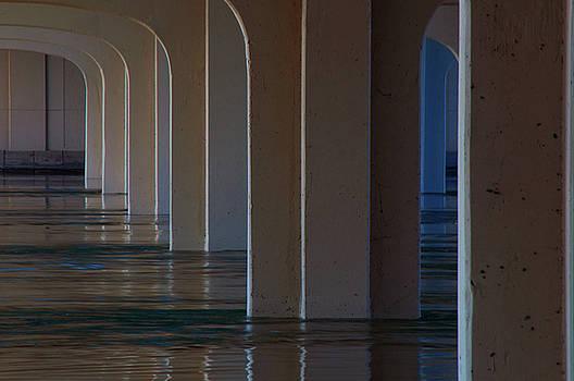 Spring Flood by Brenda Leitow
