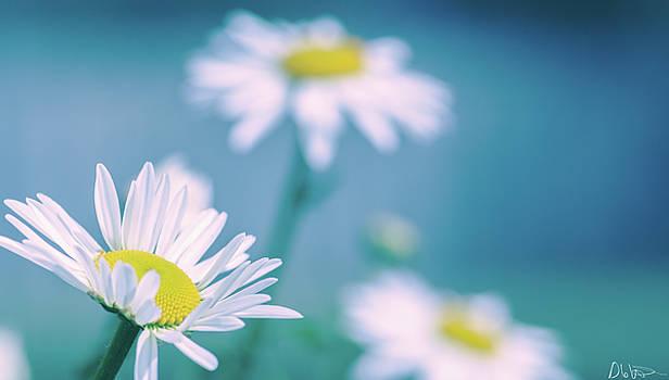 Spring Floral Print by Garvin Hunter