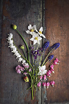 Spring Flower Bouquet on Wooden Table by Di Kerpan