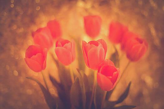 Elvira Pinkhas - Spring Flowers