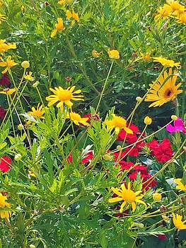 Spring Flowers by Kay Gilley