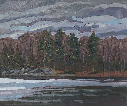 Spring Forest Shore by Phil Chadwick