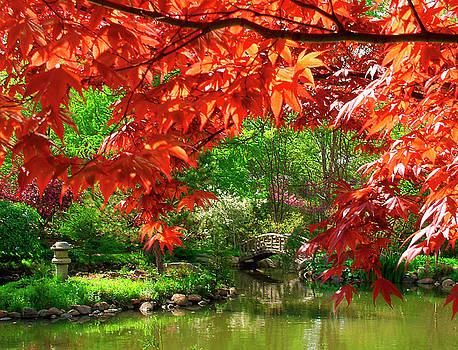 Spring Garden by Rein Nomm