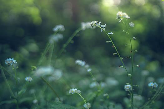 Gene Garnace - Spring Garden Scene #1