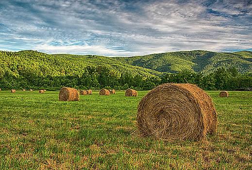 Spring Harvest by Reid Northrup