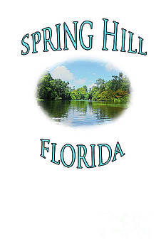 Spring Hill Florida by Judy Hall-Folde