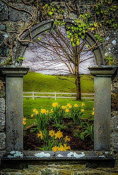 Spring in Ballynacally, County Clare by James Truett