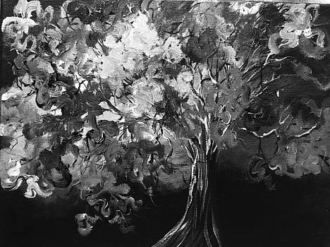 Spring in black and white by Jodi Eaton