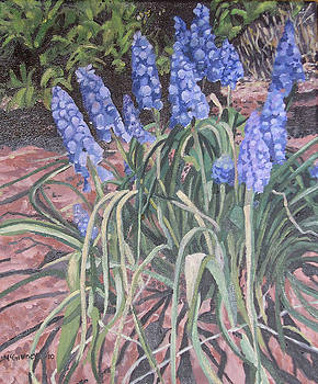 Spring in Bloom Hyacinths by Joan McGivney