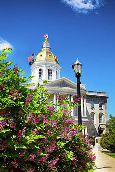 Spring in Concord by Robert Clifford
