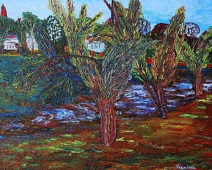 Vadim Levin - Spring in Cranbury