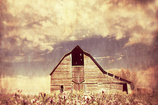 Spring in Kansas  by Julie Hamilton