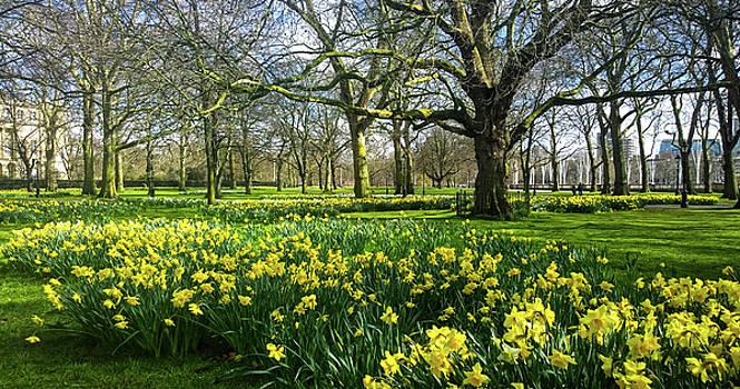 Spring in London by Anne Kotan