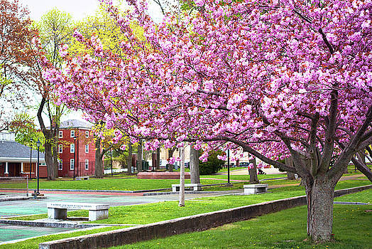 Spring in Prescott Park by Eric Gendron