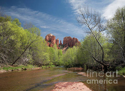 Spring in Sedona by Jim Chamberlain