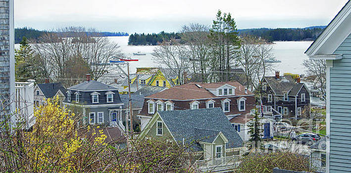 Spring in Maine, Stonington by Christopher Mace