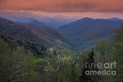 Spring in the Blue Ridge Parkway. by Itai Minovitz