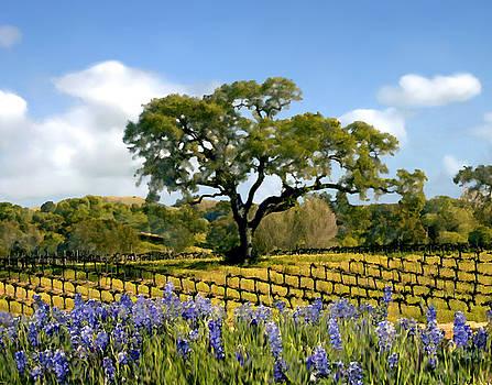 Kurt Van Wagner - Spring in the vineyard