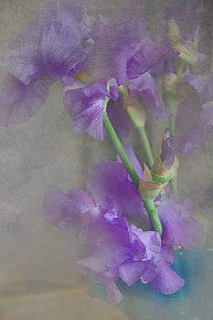 Spring Iris Bouquet by Jeff Burgess