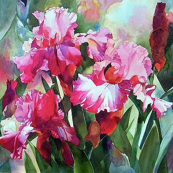 Spring Iris by Karen Vernon