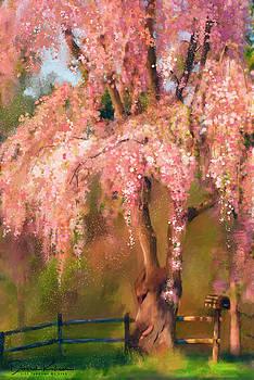 Spring is Here by Deborah Kolesar