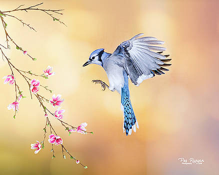 Spring is in the Air by Peg Runyan