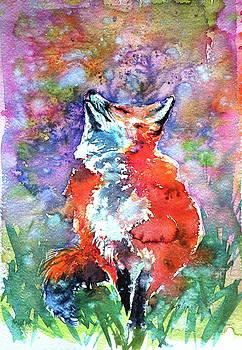 Spring is in the air - red fox by Kovacs Anna Brigitta