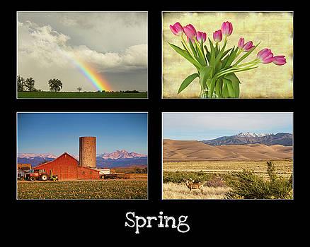 James BO Insogna - Spring