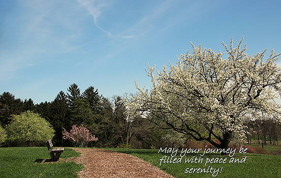 Spring Journey by Rosanne Jordan