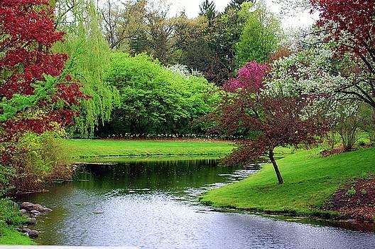 Spring Landscape 1 by Jennifer Englehardt