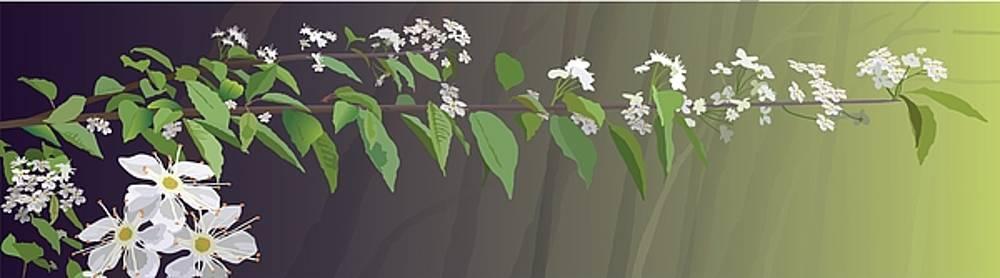 Spring Leaves by Marian Federspiel