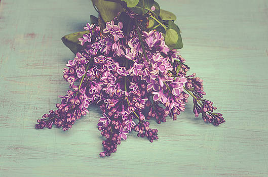Spring Lilacs by Olivia StClaire