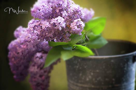 Spring Lilacs by Norma Warden