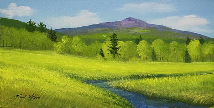 Spring Meadow Brook by Frank Wilson