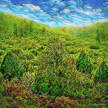 Spring Meadow Flow by Joel Bruce Wallach