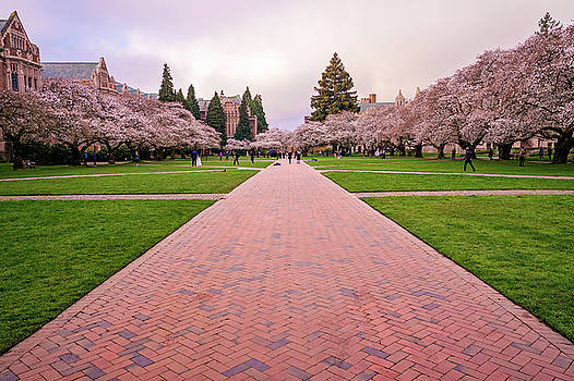 Spring Morning At The Quad by Matt McDonald
