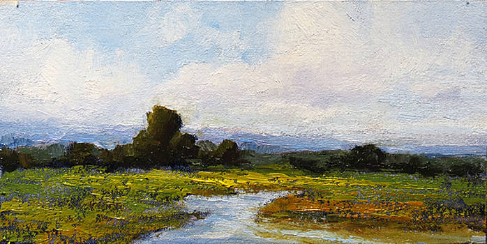 Spring Morning by Steven  McDonald