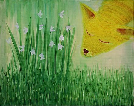 Spring Morning by Tone Aanderaa