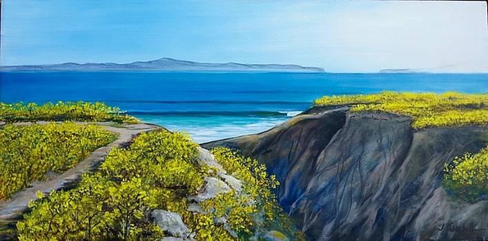 Spring mustard frames Santa Cruz Island by Jeffrey Campbell