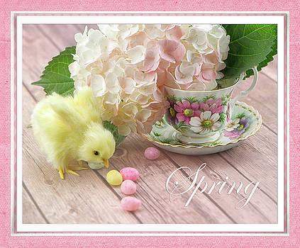 Spring by Nancy Kirkpatrick