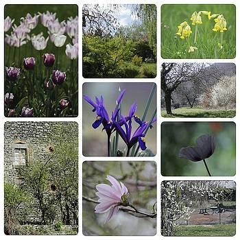 Spring of Auvergne by Elizabeth  Dallet