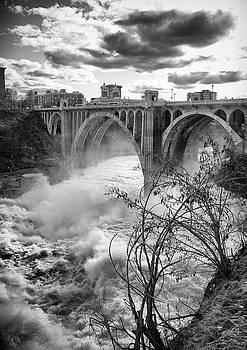 Spring on Spokane Falls by James Richman