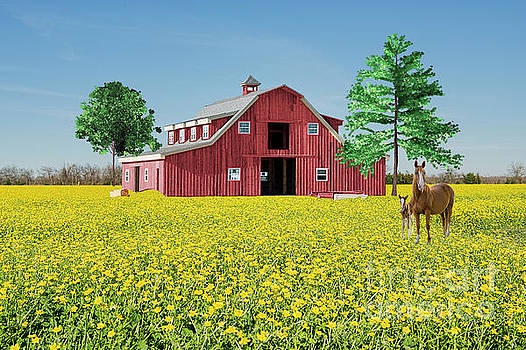Spring on the Farm by Bonnie Barry